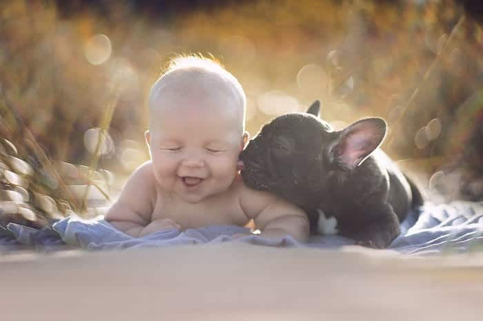 every-kids-need-pets-frenchie