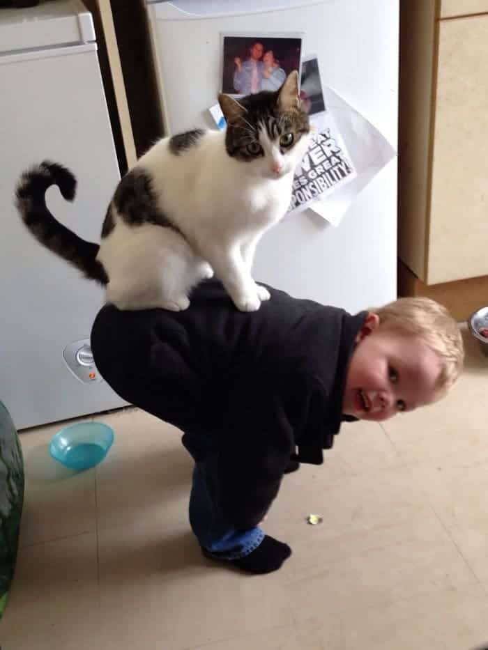 every-kids-need-pets-jump
