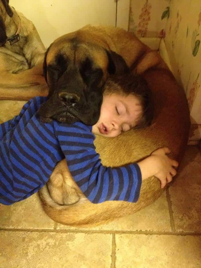 every-kids-need-pets-pillow