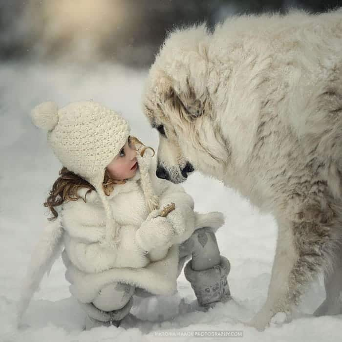 every-kids-need-pets-snow