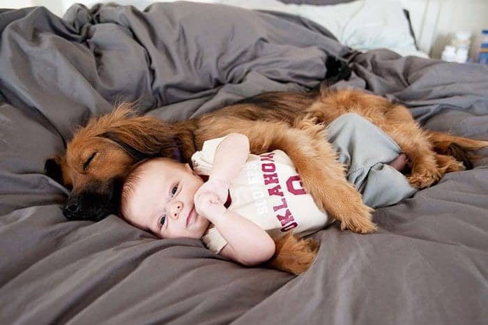 every-kids-need-pets-spooning