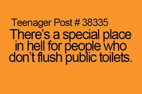 flush toilets truth