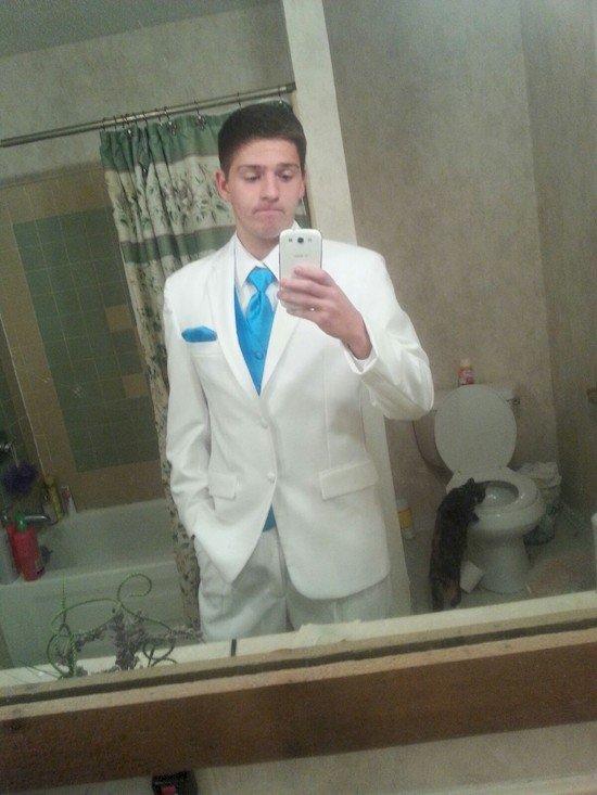 guy suit cat toilet