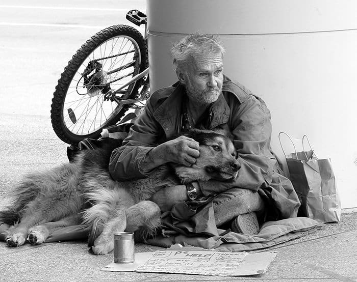 homeless-dogs-unconditional-love-bill