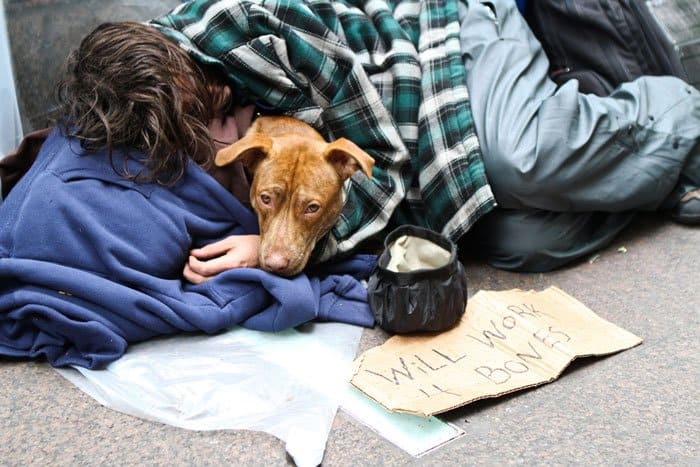 homeless-dogs-unconditional-love-bones