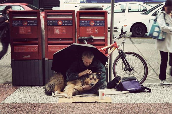 homeless-dogs-unconditional-love-cover