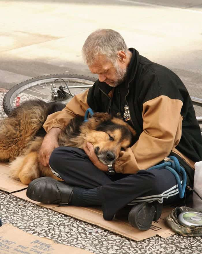 homeless-dogs-unconditional-love-cuddle