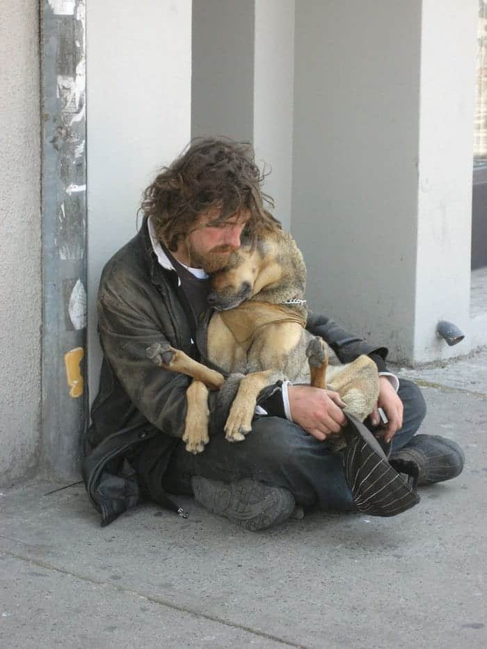 homeless-dogs-unconditional-love-curl