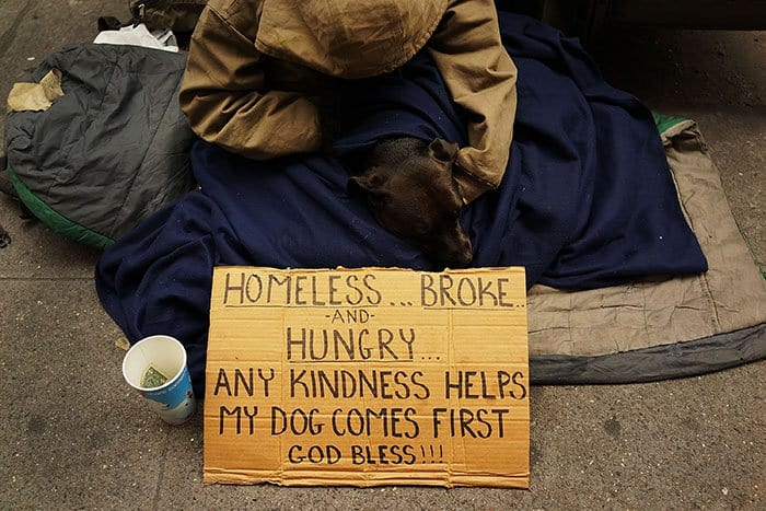 homeless-dogs-unconditional-love-first