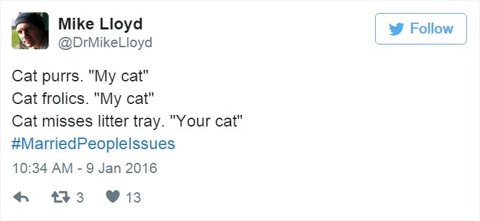 married-tweets-cat