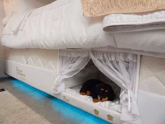 pet-compartment