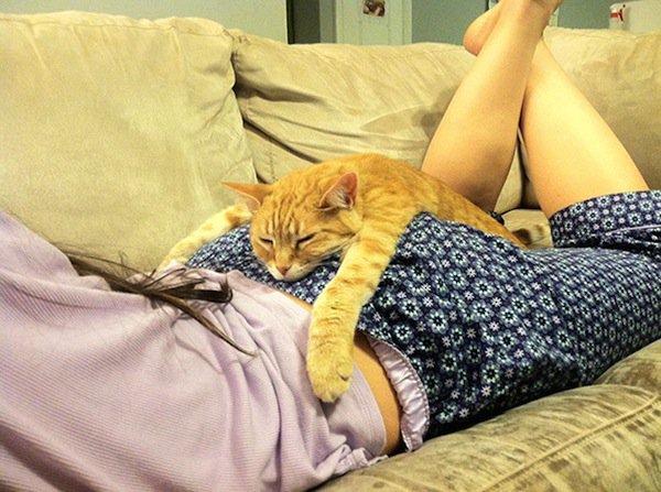 sleep-cat-person