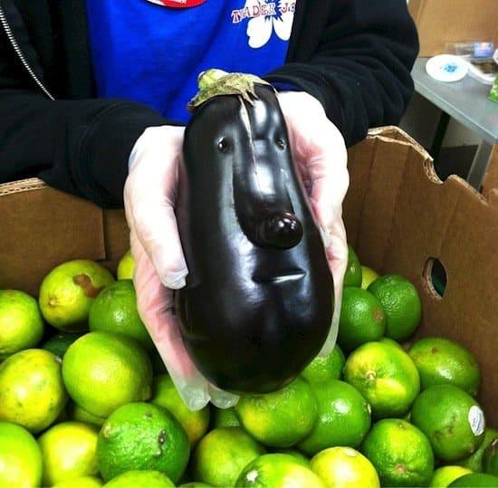 things-eggplant