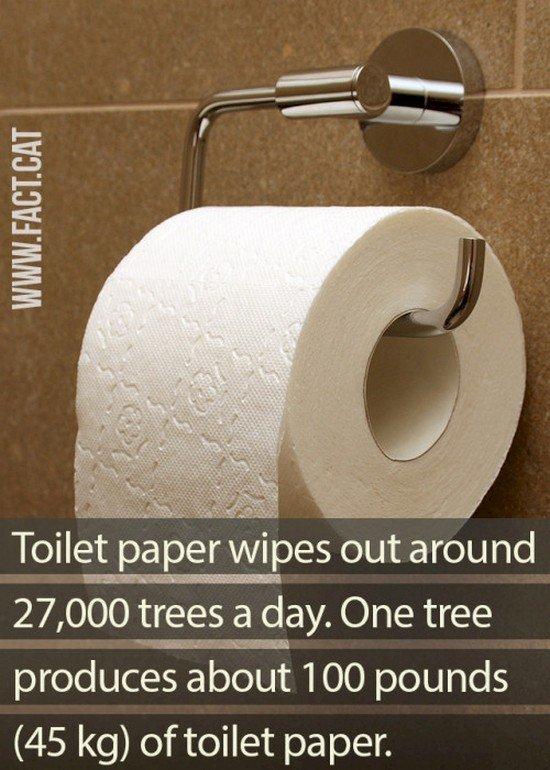 Tissue toilet telah memusnahkan 27.000 pohon tiap hari. Satu pohon memproduksi sekitar 45 kg kertas tissue.