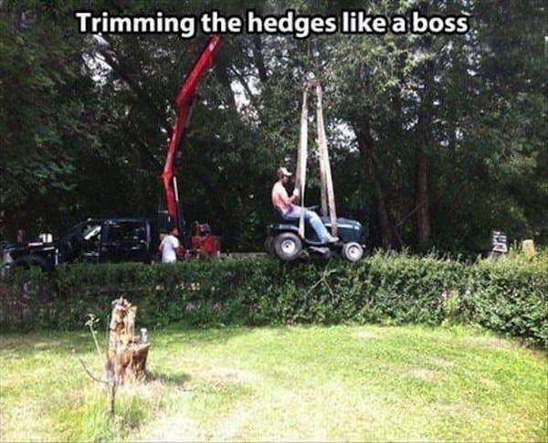 wrong-hedge