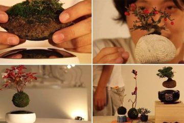 Air Bonsai Floating Trees For Home