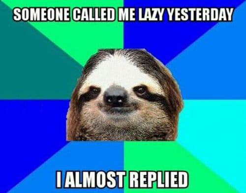 photo of sloth with lazy joke