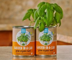 Basil-In-A-Can