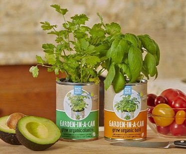 Basil-In-A-Can herbs