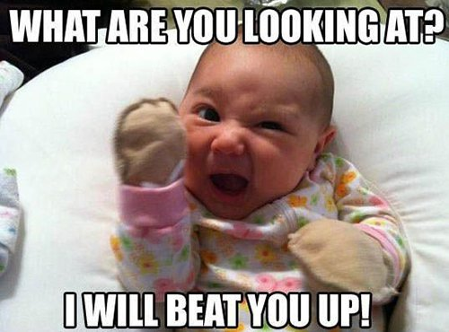 Funny Baby Meme Pics : Hilarious baby memes that will brighten up your day
