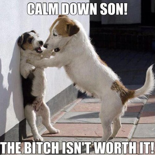 Calm Down Son