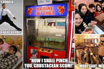 Crazy Things Only See In Japan