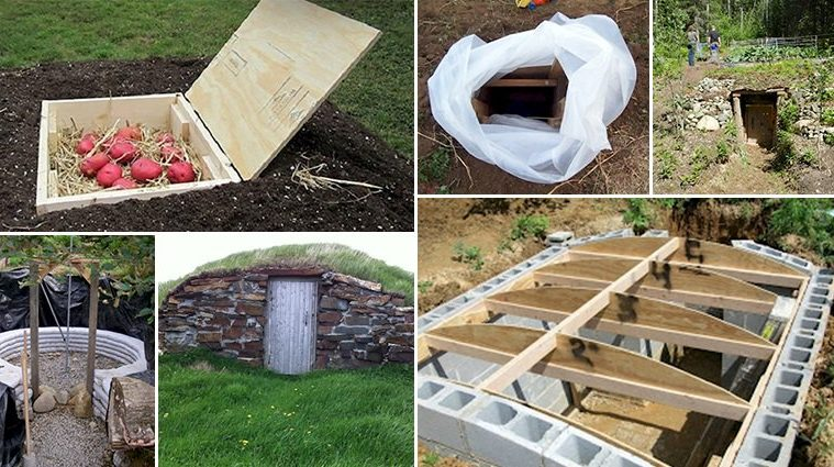 12 Creative Root Cellars That Will Make You Want To Build