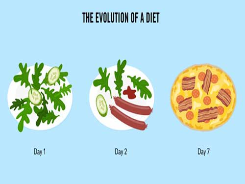 Evolution Of Diet