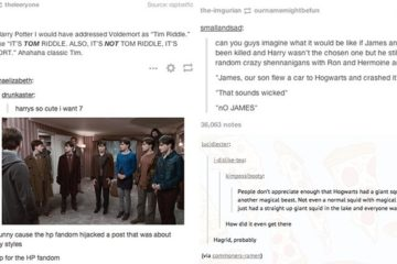 'Harry Potter' Fans Hilarious Tumblr