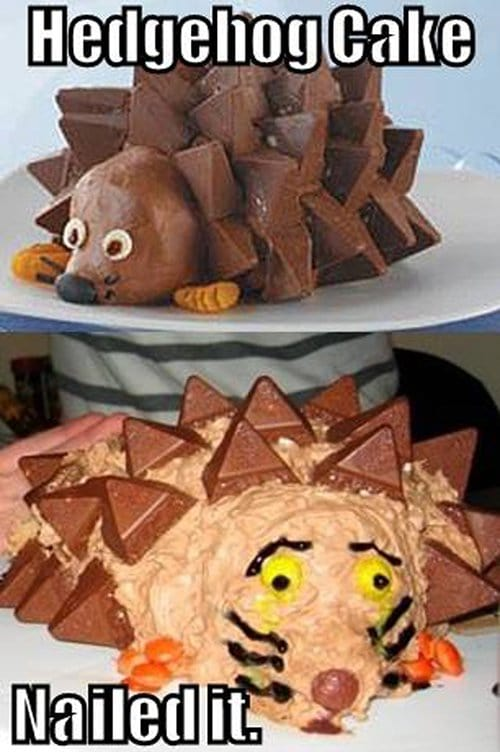 Hedgehog Cake Instructions