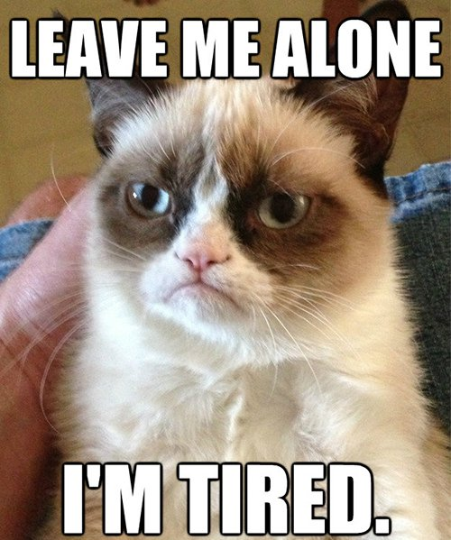 Leave Me Alone2 13 accurate memes about being tired that we can all relate to