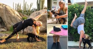Rachel Brathen Goat Yoga