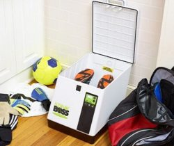 Shoe Deodorizer And Sanitizer