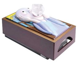 The Scream Tissue Box Cover