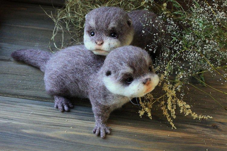 animals-ferret