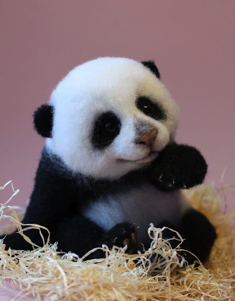animals-panda