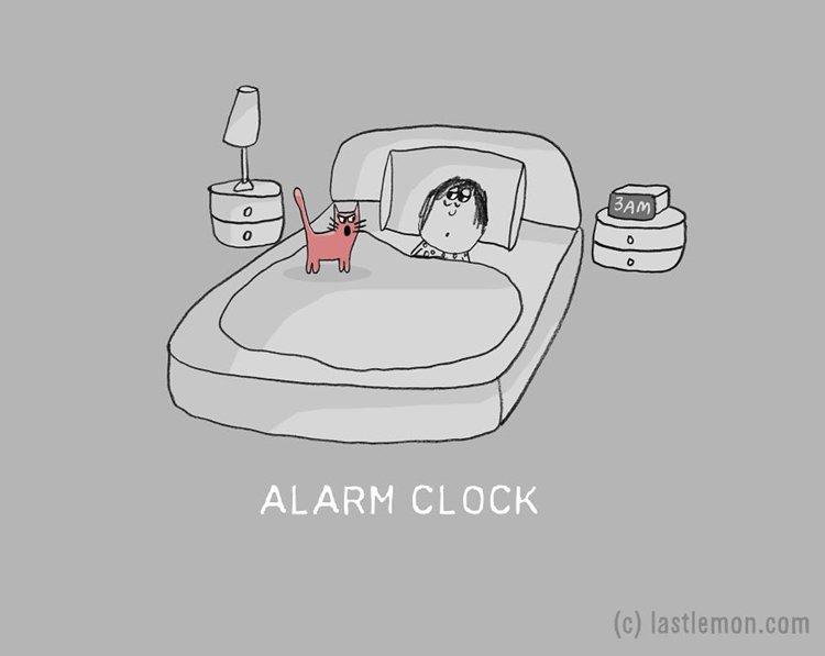 cat-jobs-alarm