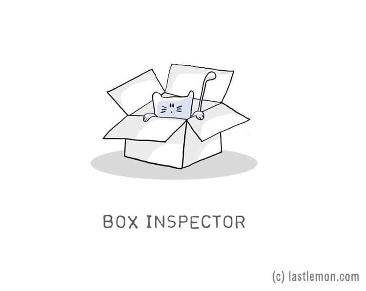 cat-jobs-box