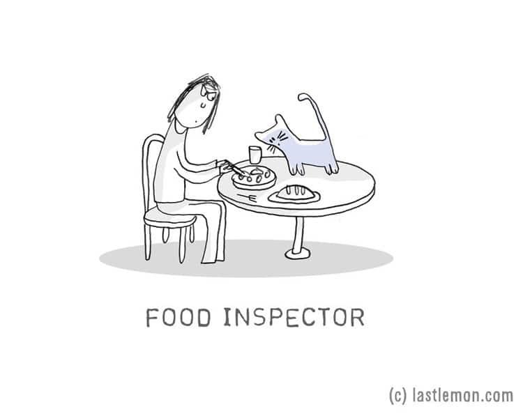 cat-jobs-food