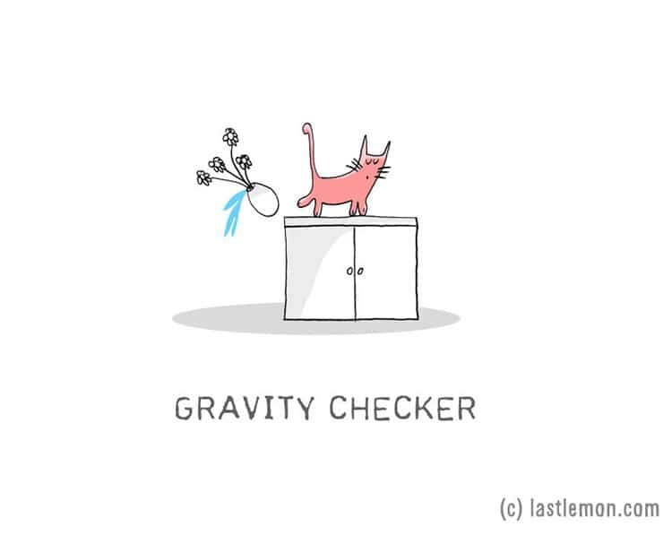 cat-jobs-gravity