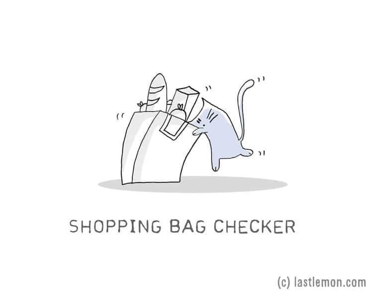 cat-jobs-groceries