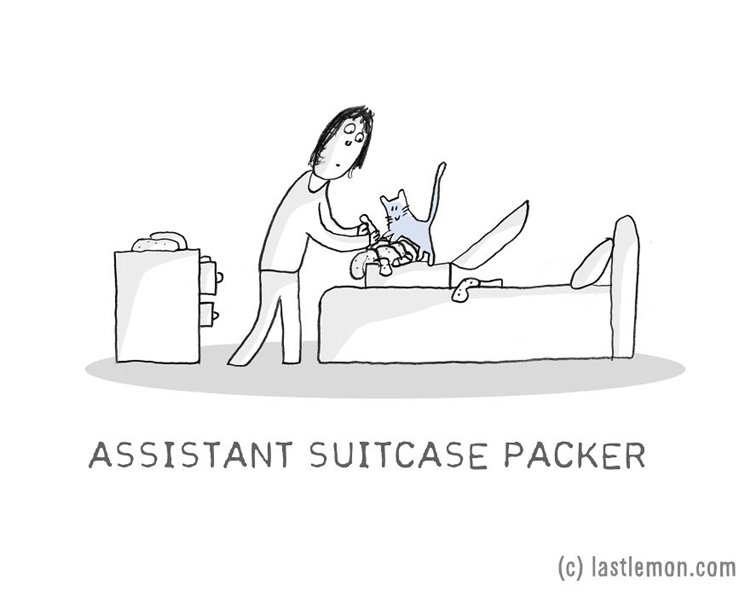 cat-jobs-packer