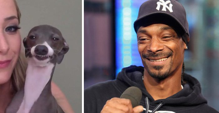 celeb-snoop