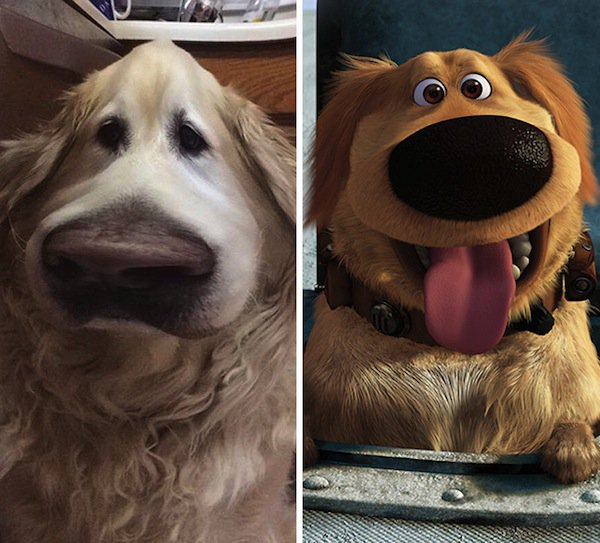 dog-dug