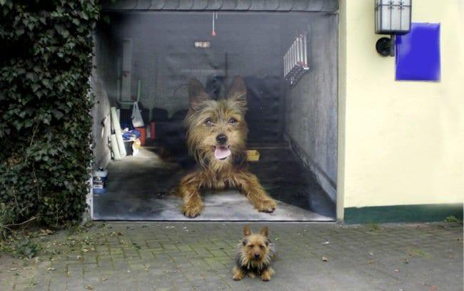 dog garage