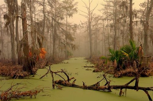 fascinating-photos-louisiana