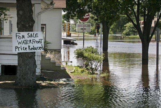 flood property joke