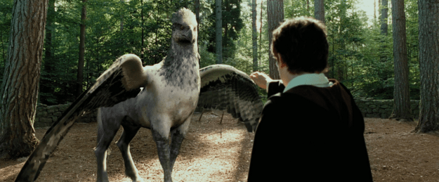 harry-potter-ruin-your-life-hippogriff