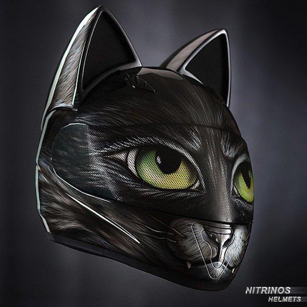 helmet-cat