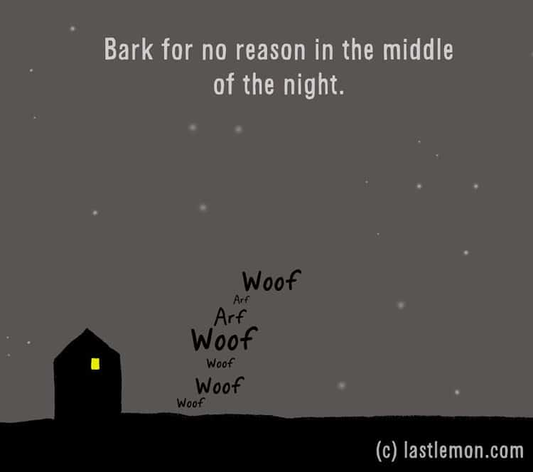 how-to-be-a-dog-bark
